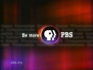 PBS system cue 2002 18.5