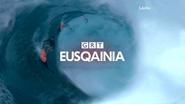 GRT Eusqainia ID 2013 Surfers