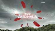 GRT Cardinalia ID Kites 2013