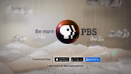 PBS system cue - Anywhere - 2014