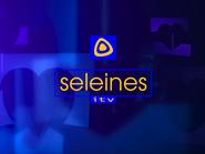 Seleines Television 1999