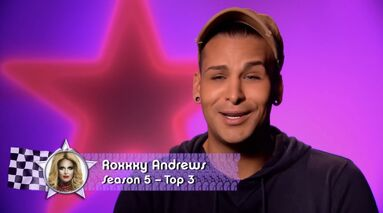 Roxxxy AS2 Confessional