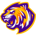 Louisiana State Universitylogo square.png