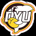 DYU (Chinese Team)logo square.png