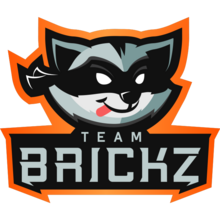 Team Brickzlogo square.png