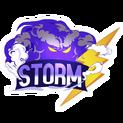 Storm E-Sportslogo square.png