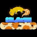 QLASH Geckologo square.png
