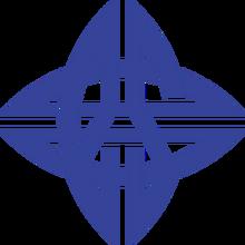 EStar (Chinese Team)logo square.png