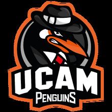 UCAM Penguinslogo square.png