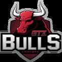 GTZ Bullslogo square.png