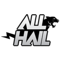 Team All Haillogo square.png