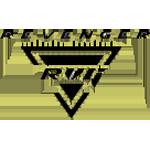 Revenger (Chinese Team)logo square.png