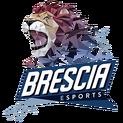 Brescia Esportslogo square.png