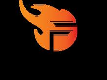 Team Flashlogo profile.png