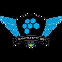 Team Propertylogo square.png