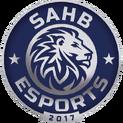 SAHB eSportslogo square.png