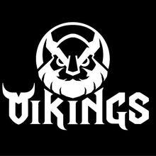 VikingsGaming.jpg