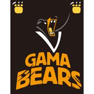 Gama Bears.png