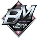 Bigfile Miraclelogo square.png