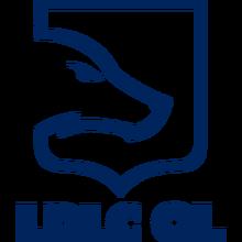 LDLC OLlogo square.png