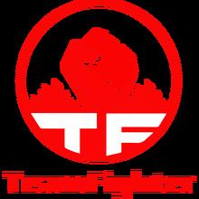 Team Fighterlogo square.png