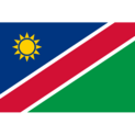 Namibia (National Team)logo square.png