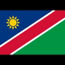 Namibia (National Team)logo square.png