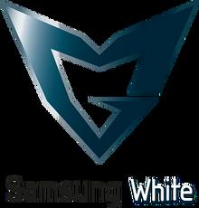 Samsung Whitelogo profile.png