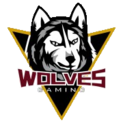 WOLVES Gaminglogo square.png