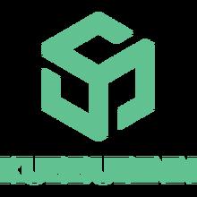 Kubburinn 2019.png