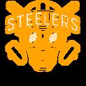 Belong Steelerslogo square.png