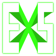 Excess Successlogo square.png
