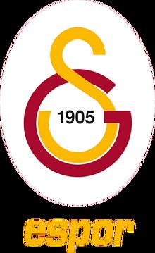 Galatasaray Esportslogo profile.png