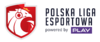 FE PLE Logo.png