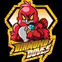 Diamond Doveslogo square.png