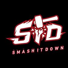 Smash It Downlogo square.png