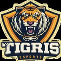 Tigris eSportslogo square.png