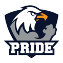PRIDE (Polish Team)logo square.png