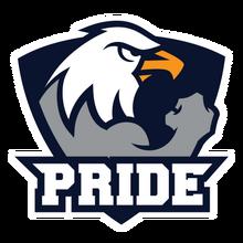PRIDE (Polish Team)logo square.png