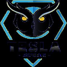 Tesla E-Sportslogo square.png