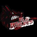 Elite Wolveslogo square.png