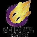 Celestial e-Sportslogo square.png