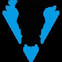 Varona Esportslogo square.png