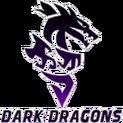 Dark Dragonslogo square.png