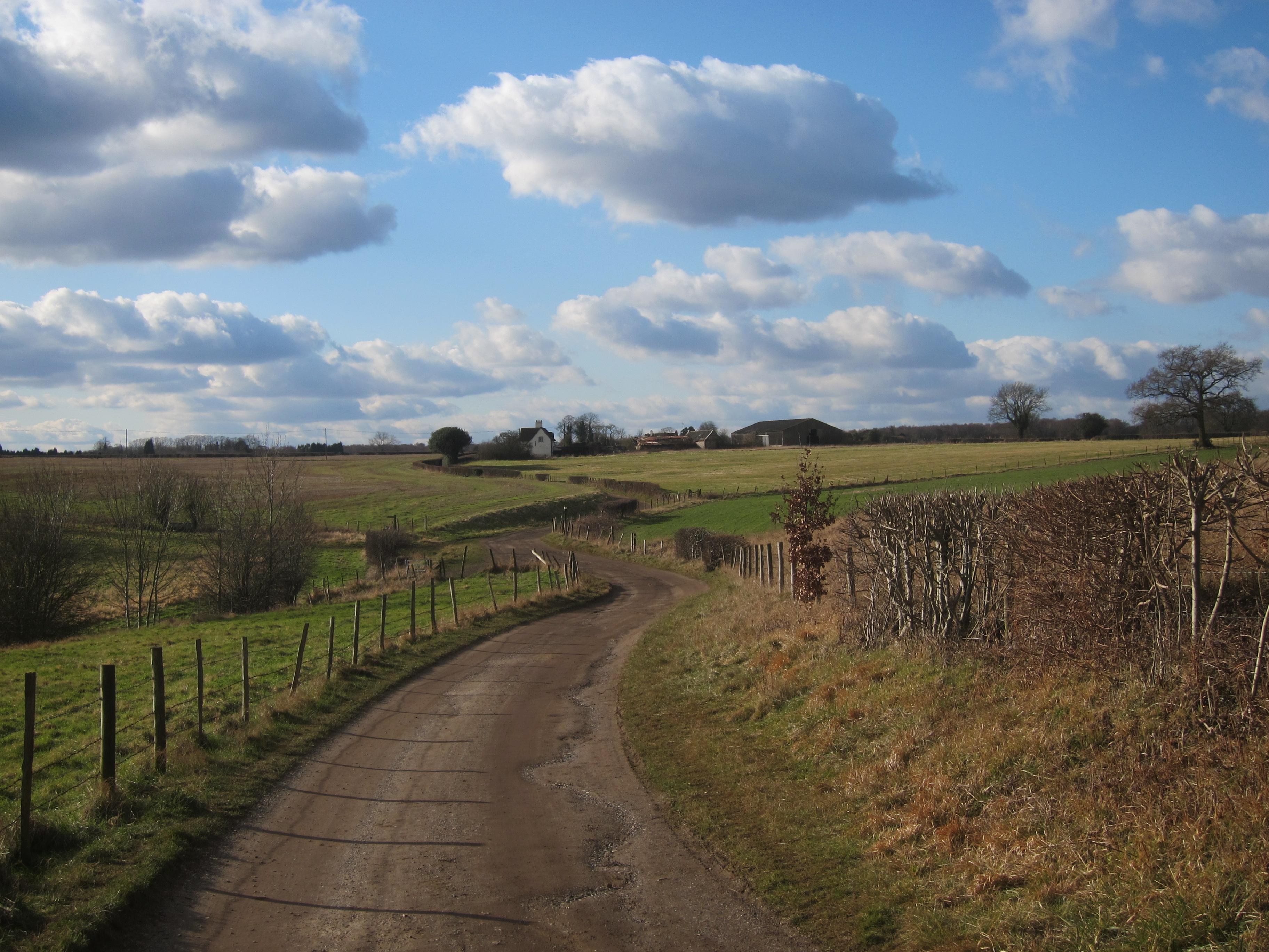 Canons Farm & Banstead Woods