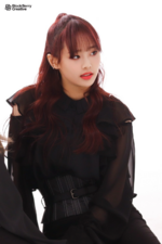 LOONA Butterfly BTS 6