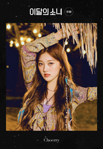 12-00 Promotional Poster Choerry