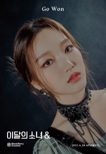 & Promotional Picture Go Won 3