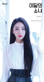 XX Promotional Poster Yves