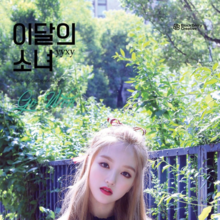 Yyxy Beauty & The Beat Go Won.png